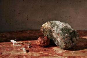 rotten_bread